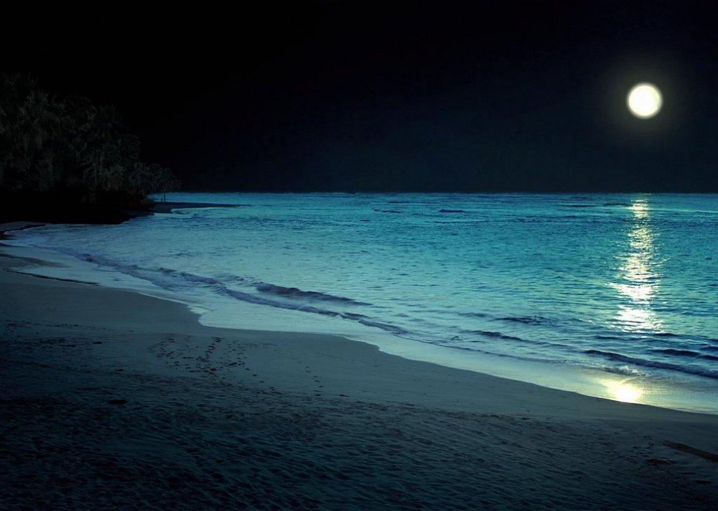 Moonlight Beach Audio Atmosphere