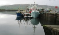 A calm walk along the harbor of Dingle, Ireland
